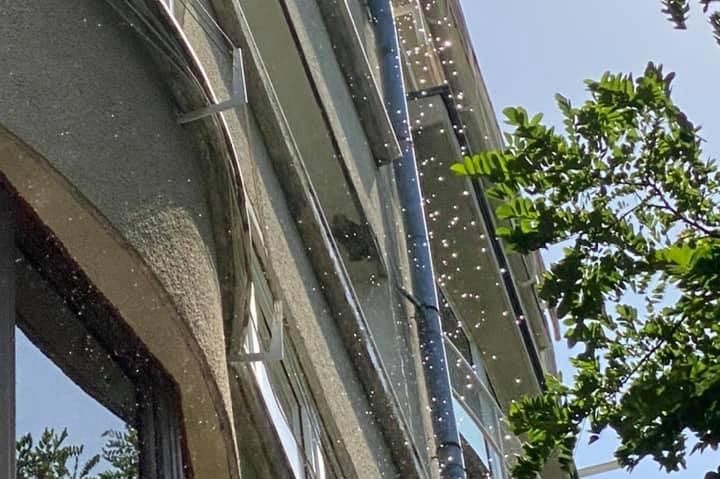 """Вода се лее по главите на преминаващи от балкони на """"Златовръх"""" 71"""