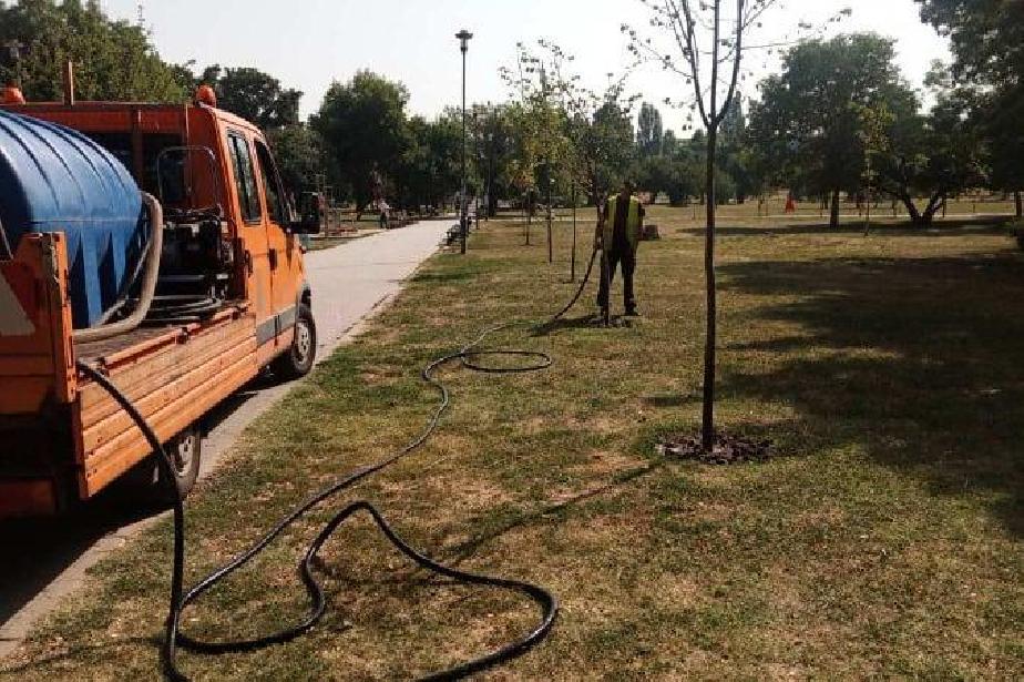 Екипи на АПП ще помагат в поливането на дърветата в столицата