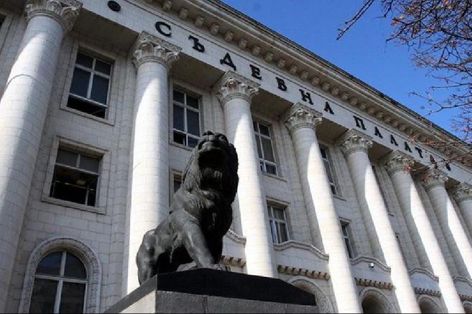 3 години затвор и 5000 лв. за собственика на питбула, нахапал момченцето в