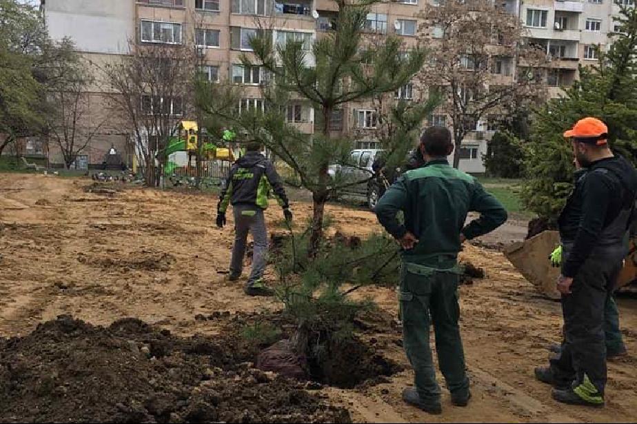 """Жители от """"Дървеница"""" живеят в кал, изкопи и шум"""